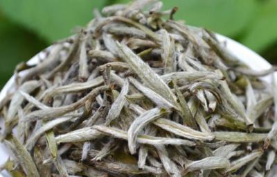 白茶烘干工艺